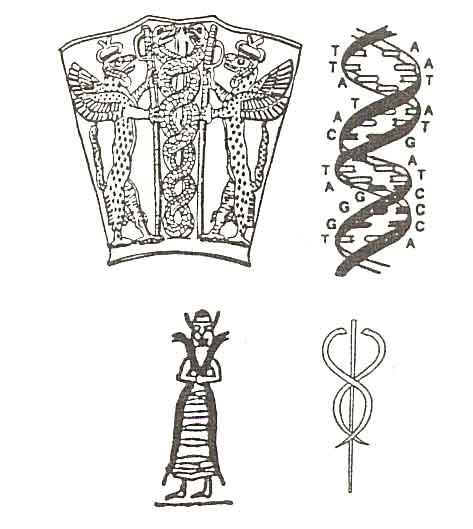 Ilustrace A - Dvojitý helix DNA